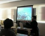 石垣島のサンゴの白化の現状を伝えました